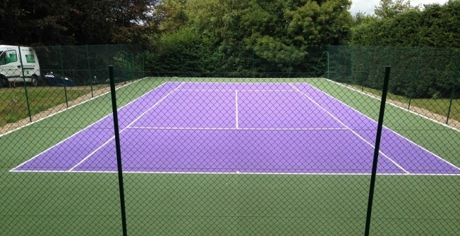 Sports Court Maintenance in Blaenau Gwent